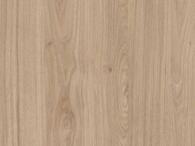 Jackson Hickory Oak